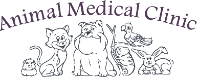 Animal Medical Clinic - Veterinarian in Fayetteville, AR